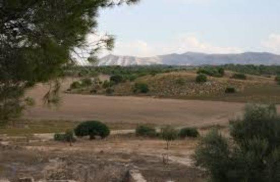 une ferme à Sidi Bou Ali Sousse